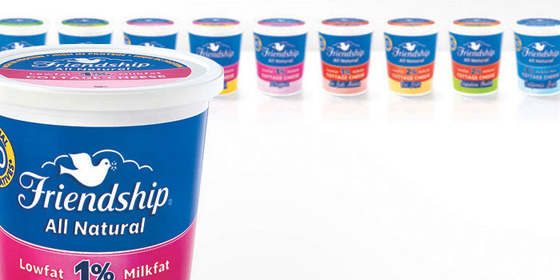 Revitalizing Friendship Dairies with Modern Food Packaging Design